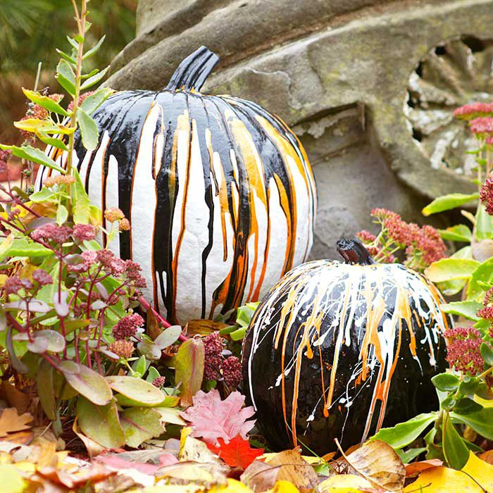 pumpkins drizzled with paint