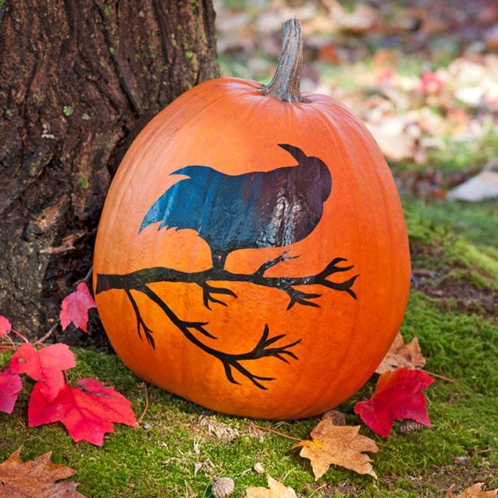 Crow-and-Branch Pumpkin