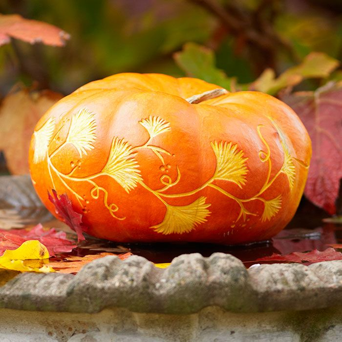 A pumpkin etched with a garland of gingko leaves resting in a bird bath.