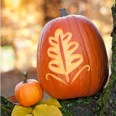A pumpkin etched with a leaf resting in the crook of a tree limb next to a smaller pumpkin.